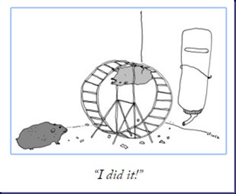 Hamster Wheel, New Yorker, 2018, Capture